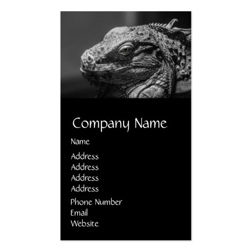 Black and White Lizard Business Cards
