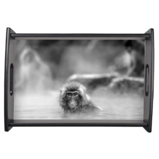 Black and White Macaque at a hot spring Serving Tray
