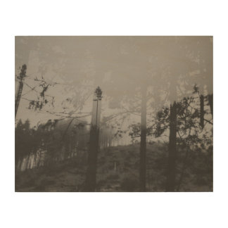 Black and White Misty Forest II Wood Wall Art