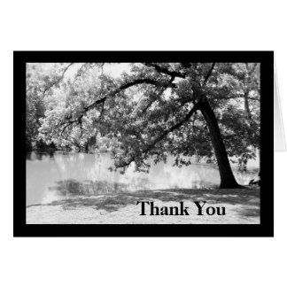 Black and White Oak Tree Thank You Greeting Card