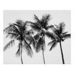 Black and white palm tree tropical summer poster