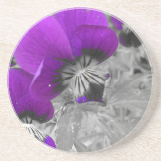 Black and White Pansy Effect Coaster