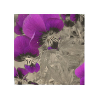 Black and White Pansy Effect Wood Wall Decor