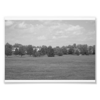 Black and White Park Photo
