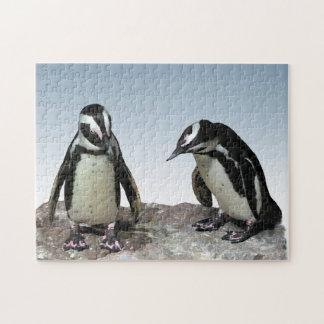 Black and White Penguin Birds Puzzle