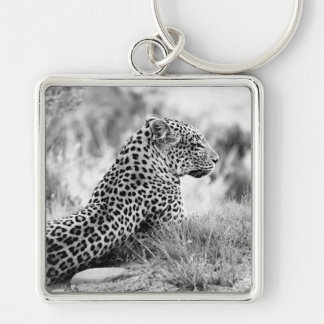 Black and White photo of Leopard looking Key Chain