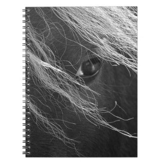 Black and White Pony Hair Photography Notebook