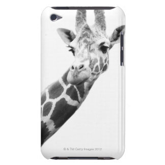 Black and white portrait of a giraffe barely there iPod cover