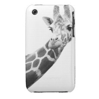 Black and white portrait of a giraffe Case-Mate iPhone 3 cases