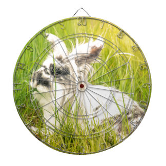 Black and white rabbit dartboard