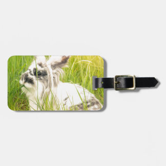Black and white rabbit luggage tag