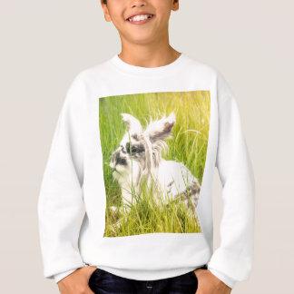 Black and white rabbit sweatshirt