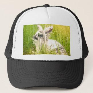 Black and white rabbit trucker hat