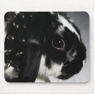 Black and white rabbit with studded collar mouse pad