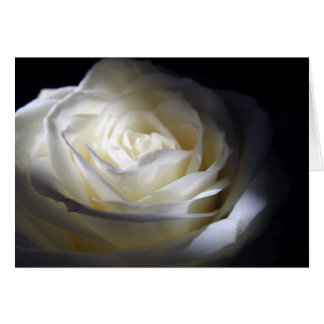 Black and White Rose Greeting Cards