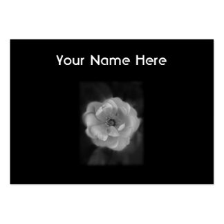 Black and White Rose. Pack Of Chubby Business Cards