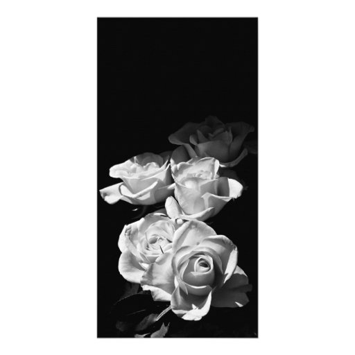 Black and white roses customized photo card
