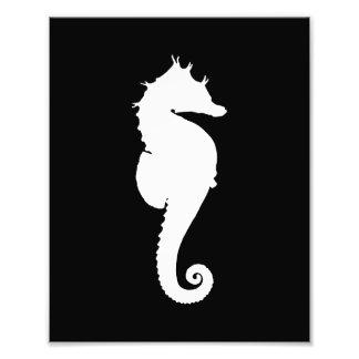 Black and White Seahorse Art Photo