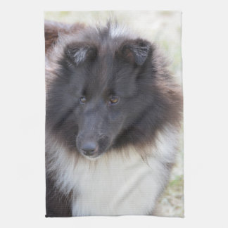 Black and White Sheltie Hand Towels