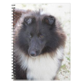 Black and White Sheltie Notebooks