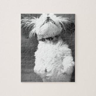 Black and White Shih-Tzu Puppy Jigsaw Puzzle