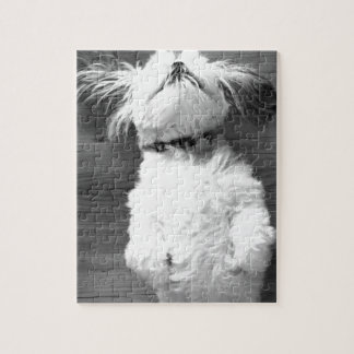Black and White Shih-Tzu Puppy Puzzles