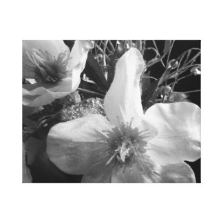 Black and White Shimmer Flowers Gallery Wrapped Canvas