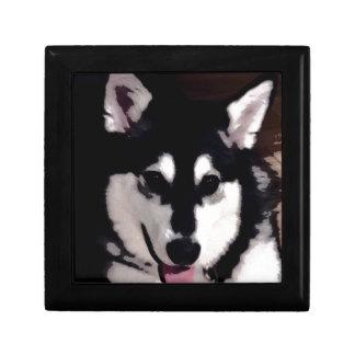 Black and white smiling Alaskan Malamute Gift Box