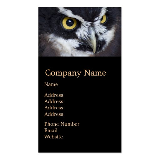 Black and White Specacled Owl Business Cards
