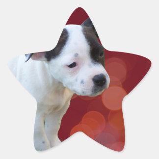 Black And White staffordshire Bull Terrier Puppy, Star Sticker