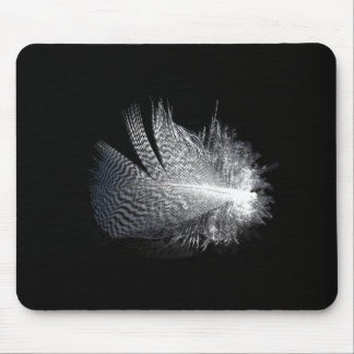 Black and White Striped Feather Floating on a Pond Mouse Pad