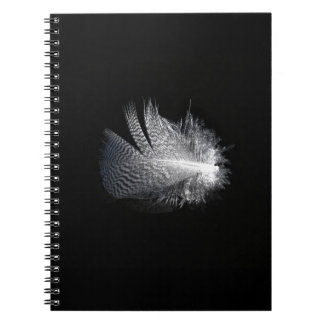Black and White Striped Feather Floating on a Pond Notebook