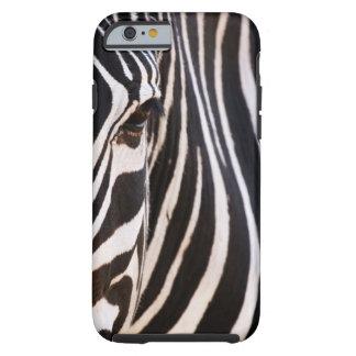 Black and White Striped Zebra Tough iPhone 6 Case