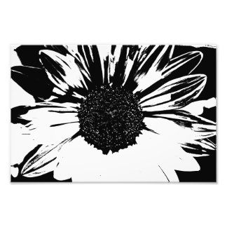Black and White Sunflower Print