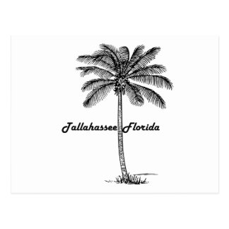 Black and White Tallahassee & Palm design Postcard