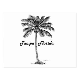 Black and White Tampa & Palm design Postcard