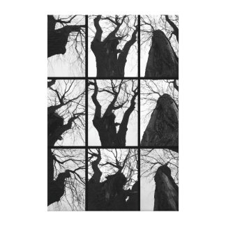Black and white. The tree Canvas Print