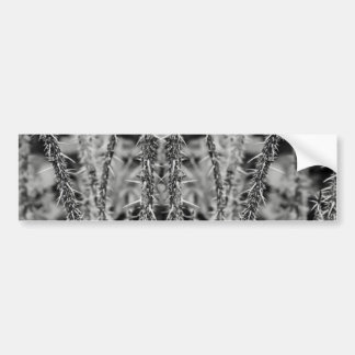 Black and White Thorns Macro Image Bumper Sticker