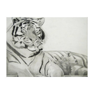 Black and White Tiger Drawing Gallery Wrap Canvas