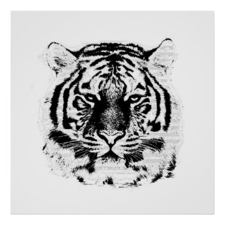 Black and White Tiger Face Poster