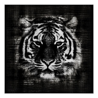 Black and White Tiger Vintage Posters