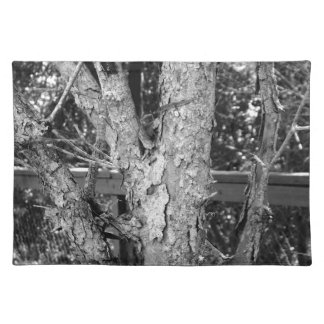 Black and White Tree Nature Photo Placemat