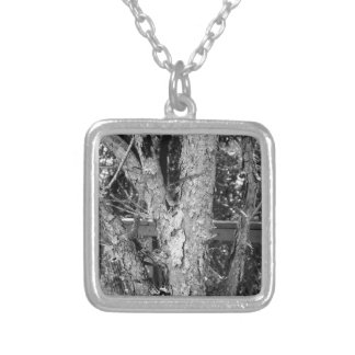 Black and White Tree Nature Photo Silver Plated Necklace