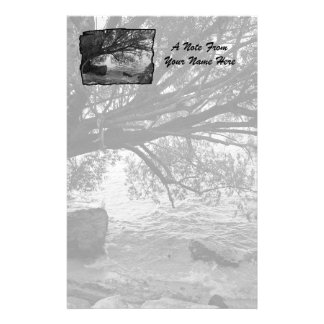 Black and White Tree Silhouette Stationery