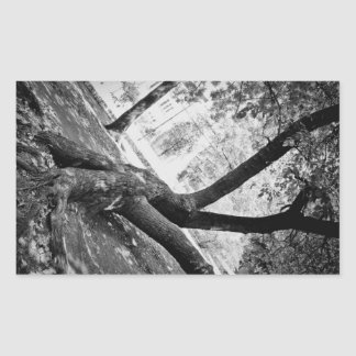 Black and white tree rectangle stickers