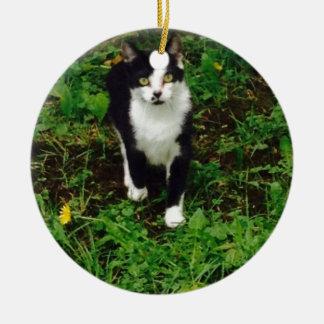 Black and white tuxedo cat in the green grass ceramic ornament
