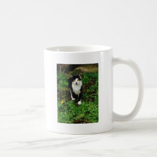 Black and white tuxedo cat in the green grass coffee mug