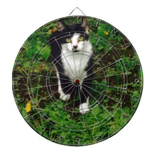 Black and white tuxedo cat in the green grass dartboard