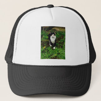 Black and white tuxedo cat in the green grass trucker hat