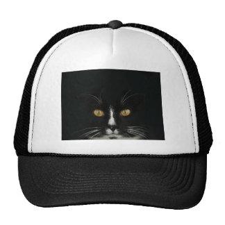 Black and White Tuxedo Kitty With Golden Eyes Cap